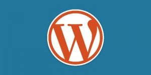 Wordpress - Thủ thuật website wordpress  - wp dkblue orange 300x150 - CÁCH ĐẠT 100 / 100 ĐIỂM GOOGLE SPEED INSIGHT