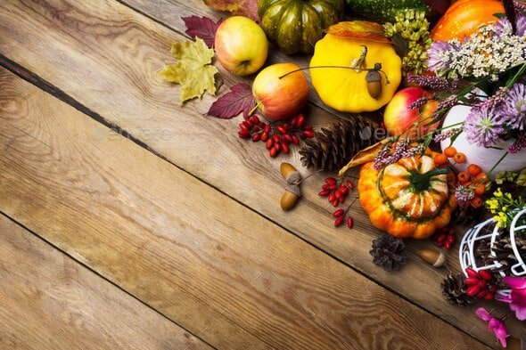 Thanksgiving arrangement with pumpkin and vegetables, copy space  - Fall280927 - Chia sẻ 7 item Envato Market miễn phí tháng 11 – 2017